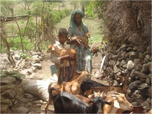 Mother and son with goat herd
