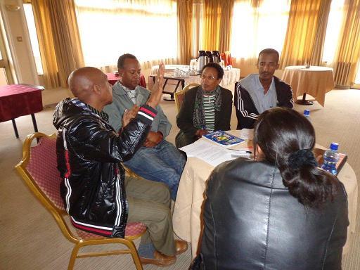Partners at workshop