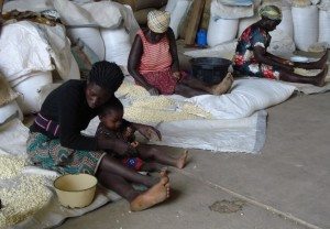 Women processing traditional seeds in Bolga UER
