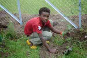 Mitiku planting a tree