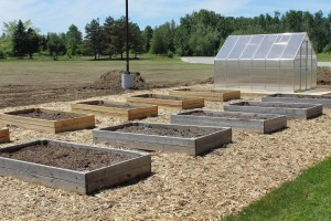 raised beds & greenhouse at Eel Ground