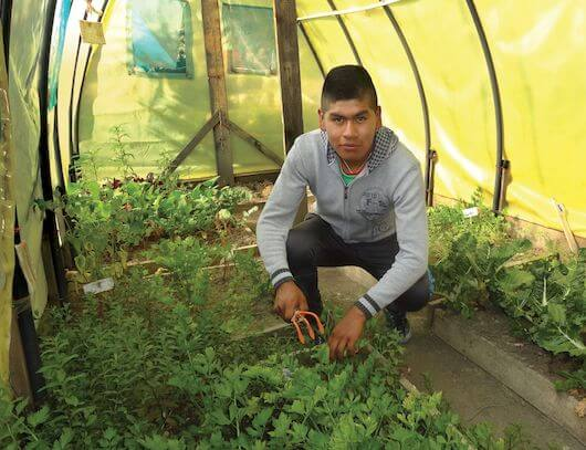 Brayan, a 17-year-old from Bolivia, squats next to garden beds inside a greenhouse.
