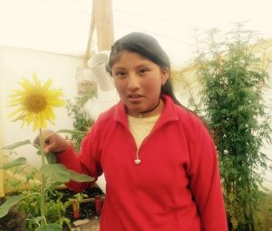 Jhoselin poses with a sunflower at the Alpacoma centre's garden. She wears a red sweater.