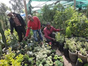 Garden Shop: Business partners with the plants