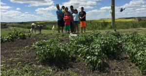 Child hunger in Indigenous communities in Canada can be significantly reduced when families are supported with sustainable food security initiatives, like this garden at Waywayseecappo First Nation (MB).