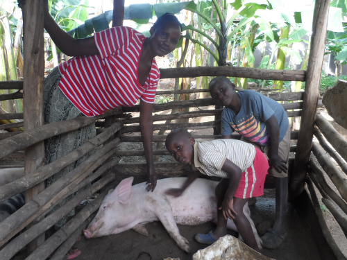 A mother and her two sons pet their pig