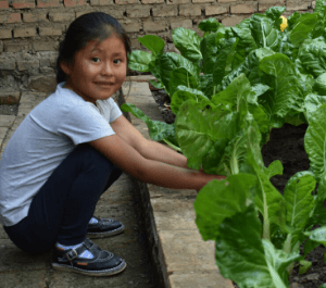A little girl working in her garden