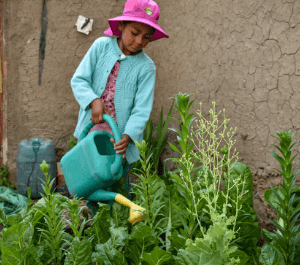 A young girl waters her plants