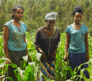 A woman and her two daughters in their field of crops