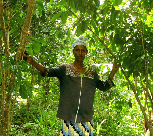 A woman stands with her thriving coffee trees