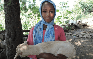 A young girl in Ethiopia poses while holding a goat
