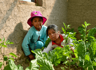 Two young girls in their backyard garden showing off their plants