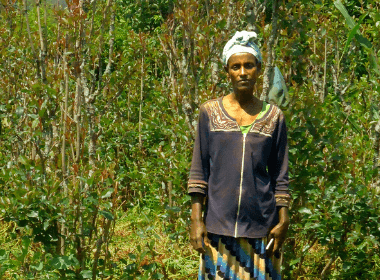 A woman stands in her field of crops