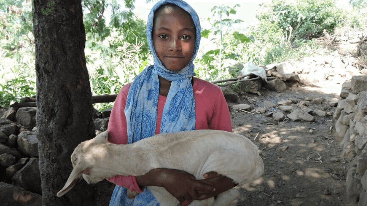 A little girl in Ethiopia poses while holding a goat