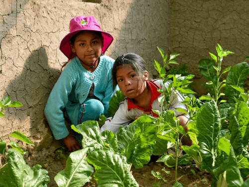 Two little girls in their home garden