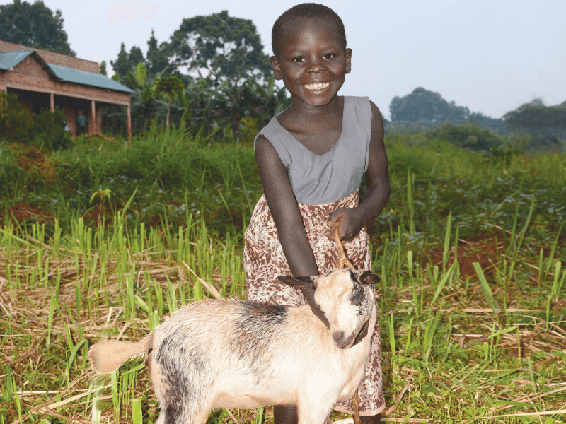 a young girl poses with her goat in a field of grass