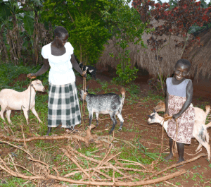 a woman and her young daughter hold their farm goats