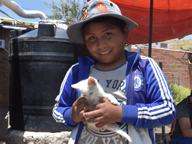 a boy holds a kitten and smiles for the camera