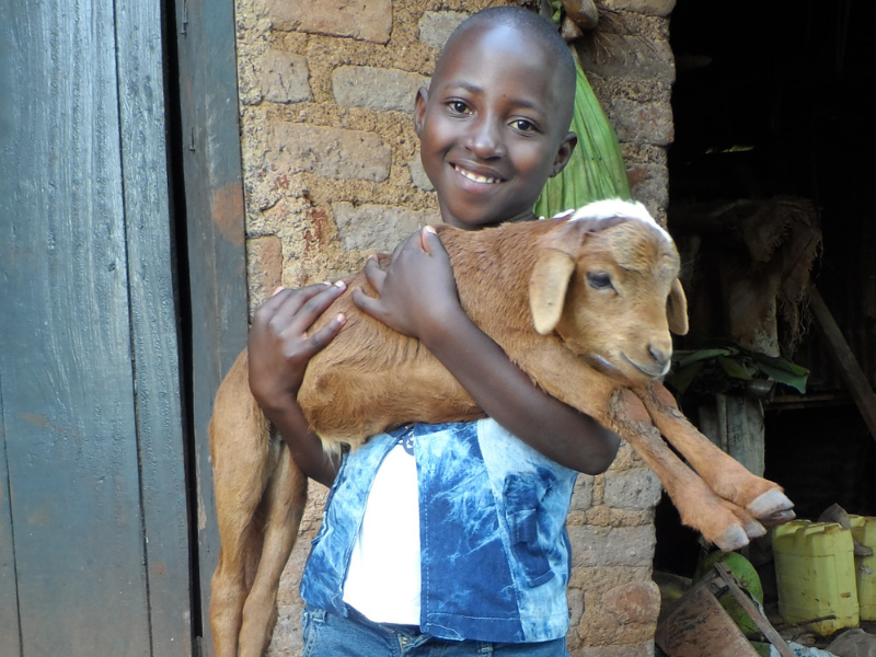 a young girl holds a sheep in her arms as she smiles for the camera