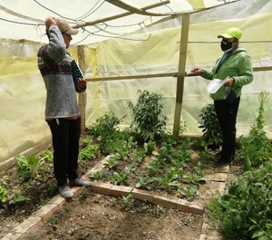 a man and woman stand in a community garden